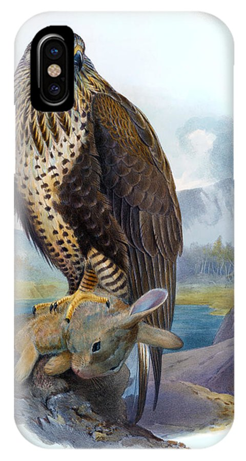 Buzzard IPhone X Case featuring the painting Rough Legged Buzzard Hawk Antique Bird Print The Birds Of Great Britain by Orchard Arts