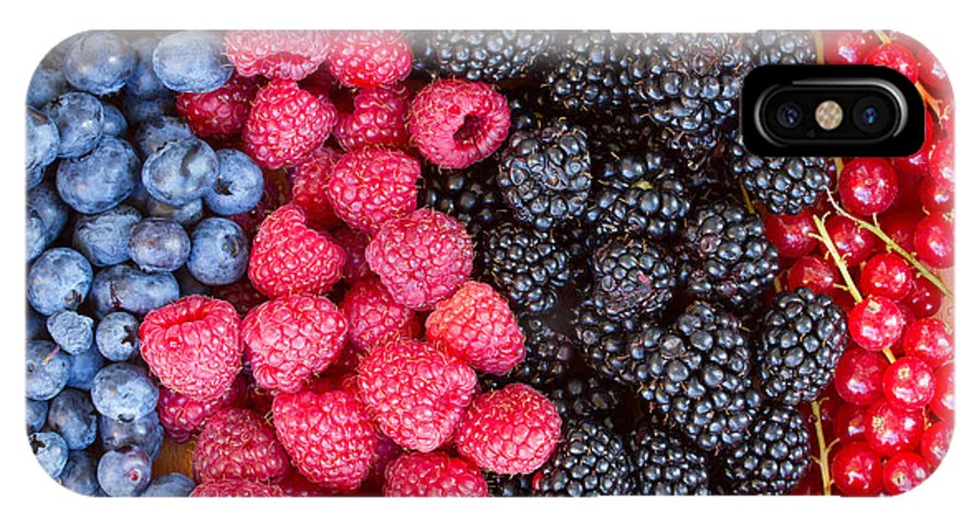 Berries IPhone X Case featuring the photograph Rows Of Berries by Anastasy Yarmolovich