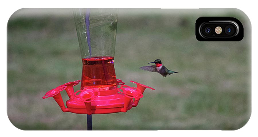 Hummingbird IPhone X Case featuring the photograph Ruby Red by Donald Crosby