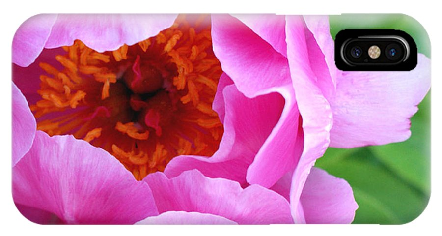 Peony IPhone X Case featuring the photograph Ruffles by Valerie Fuqua