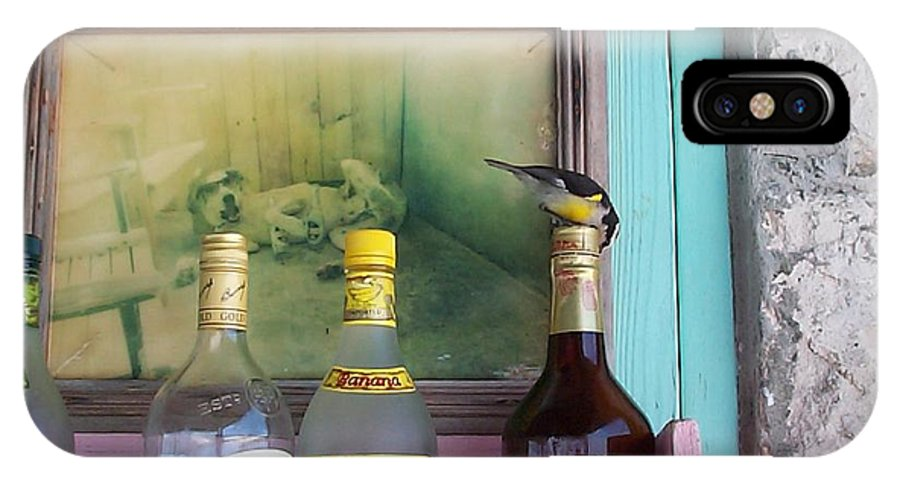 Charity IPhone Case featuring the photograph Rum Shack Bananaquit by Mary-Lee Sanders