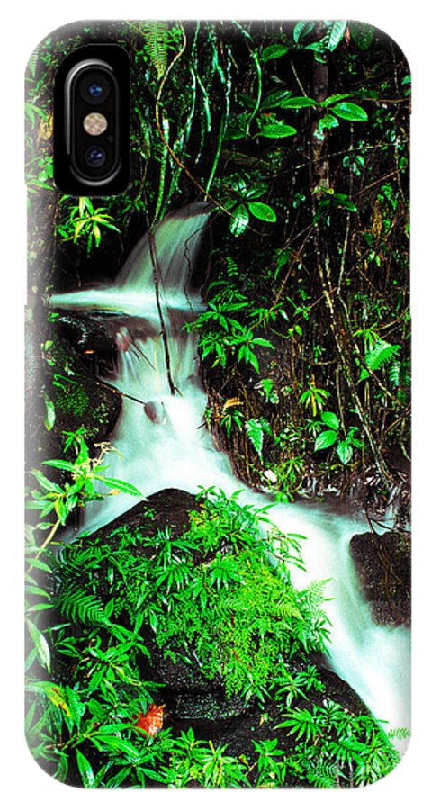 Puerto Rico IPhone X / XS Case featuring the photograph Rushing Stream El Yunque National Forest Mirror Image by Thomas R Fletcher