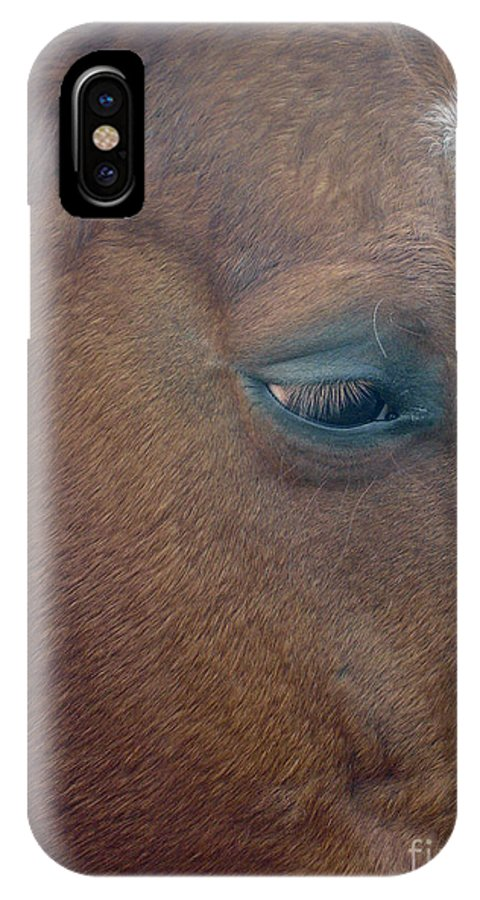Horse IPhone X Case featuring the photograph Sad Eyed by Shelley Jones