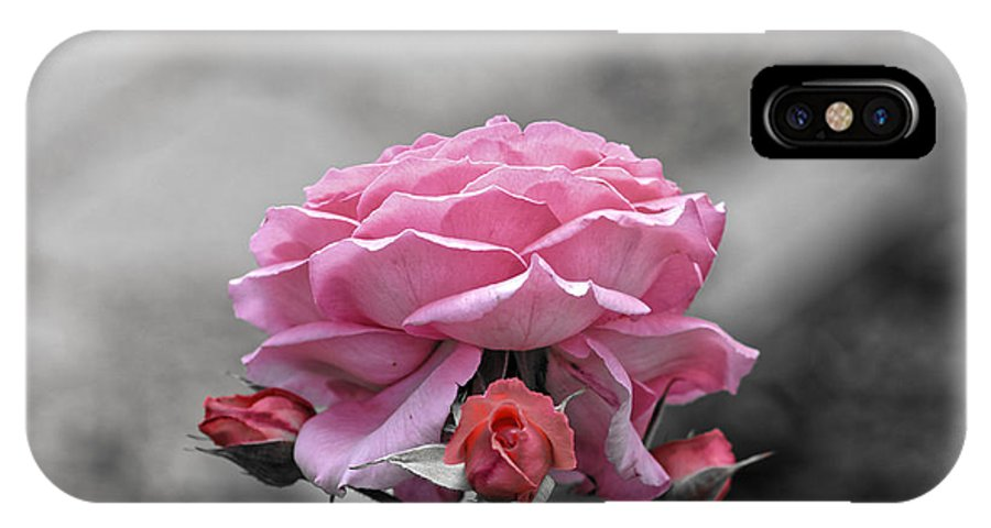 Abstract IPhone X Case featuring the photograph Sad pink rose with three buds by Adrian Bud