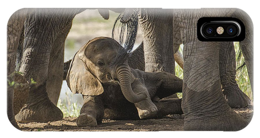 Baby Elephant IPhone X Case featuring the photograph Safest Baby In Africa by Gene Myers