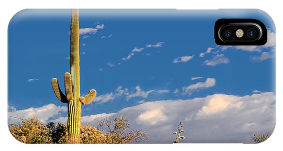 Cacti IPhone X Case featuring the photograph Saguaro Cactus - Symbol Of The American West by Christine Till