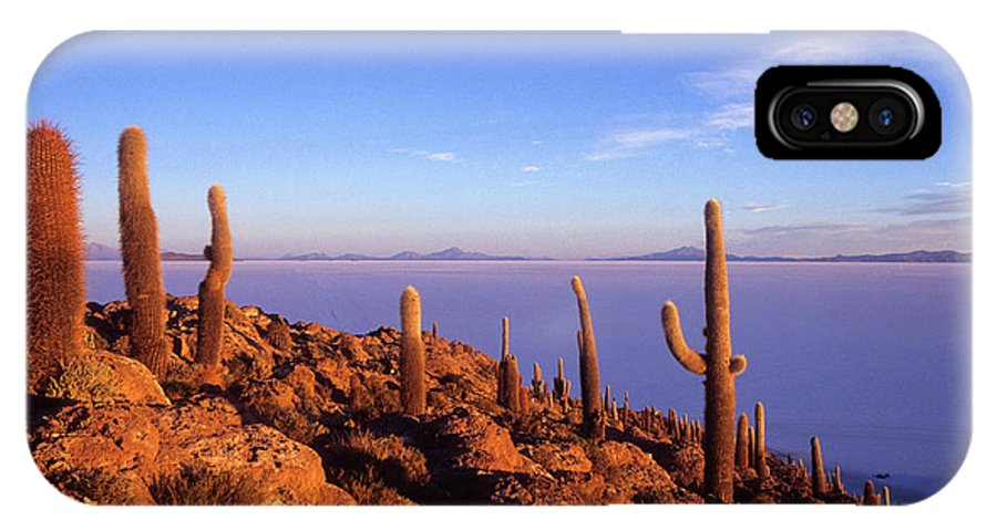 Bolivia IPhone X Case featuring the photograph Salar De Uyuni And Cacti At Sunrise by James Brunker