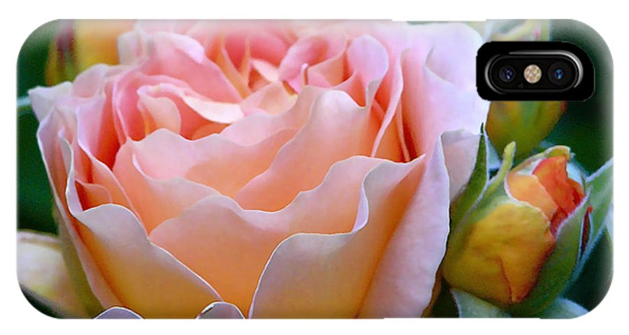 Rose IPhone X Case featuring the photograph Salmon Rose by Suzanne Shepherd