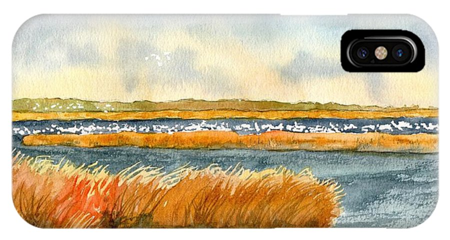 Salt Marsh IPhone X Case featuring the painting Salt Marsh And Snow Geese by Paul Temple