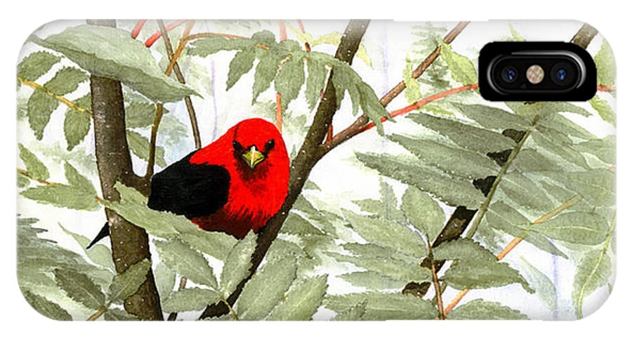 Bird IPhone X Case featuring the painting Scarlet Tanager by Mary Tuomi