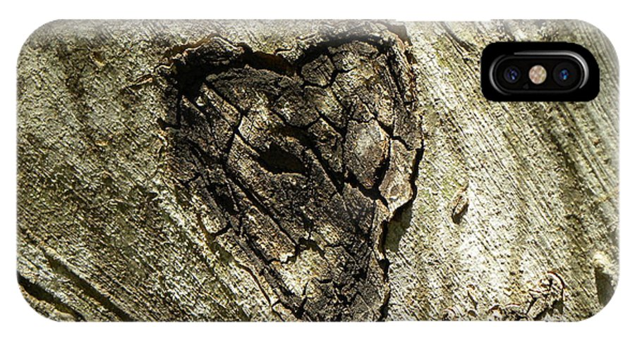 Tree IPhone X Case featuring the photograph Love Endures by Shannon Turek