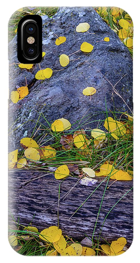 Landscape IPhone X Case featuring the photograph Scattered Aspen Leaves by Daniel Dean