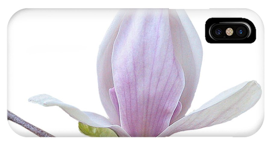 White IPhone X Case featuring the photograph Scent Of A Magnolia by Christine Till