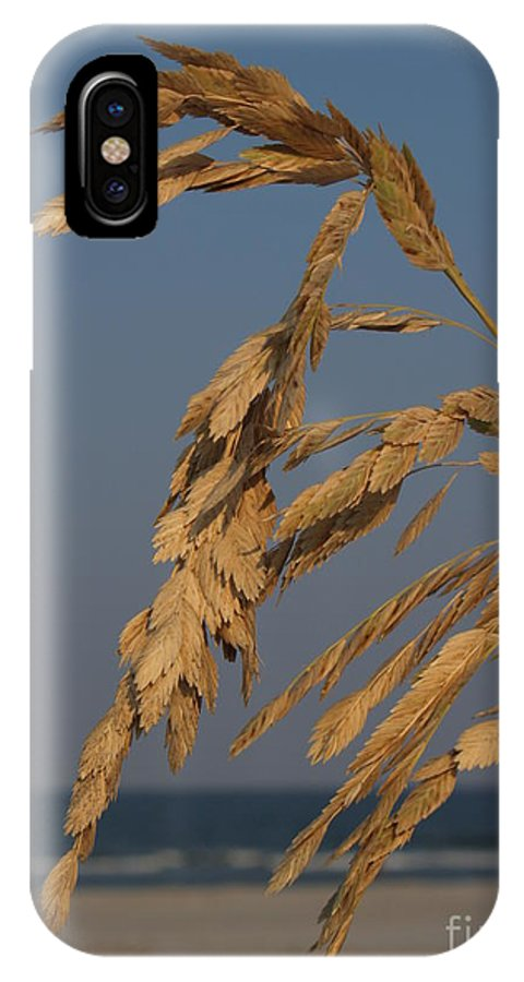 Sea Oats IPhone X Case featuring the photograph Sea Oats At Hunting Island State Park by Anna Lisa Yoder