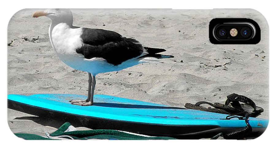 Bird IPhone X / XS Case featuring the photograph Seagull On A Surfboard by Christine Till