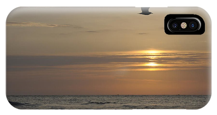 Seagull IPhone X Case featuring the photograph Seagull Over Atlantic Ocean At Sunrise by Darrell Young