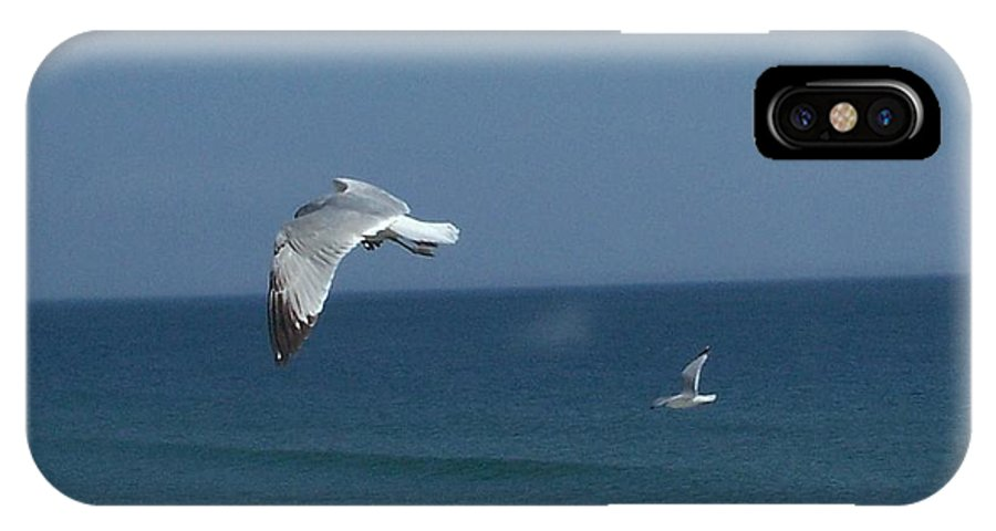 Birds IPhone X Case featuring the photograph Seagulls In Flight by Janet Pugh