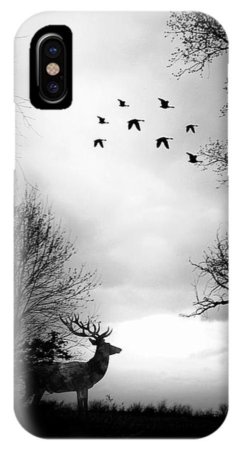 IPhone X Case featuring the photograph Seasons End Deer Geese by Michele Carter