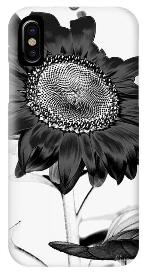 Black And White Photography IPhone X Case featuring the photograph Seattle Sunflower Bw Invert - Stronger by Heather Kirk