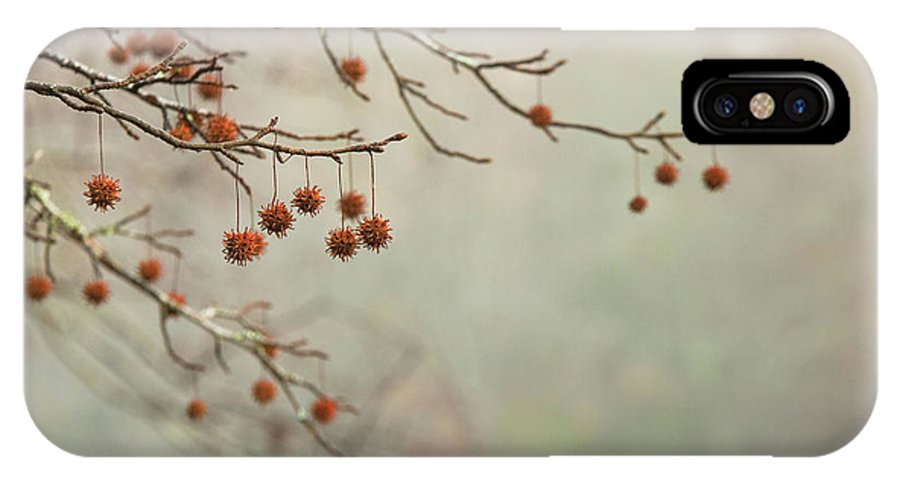 Autumn IPhone X Case featuring the photograph Seeds Of Fall by MotionOne Studios
