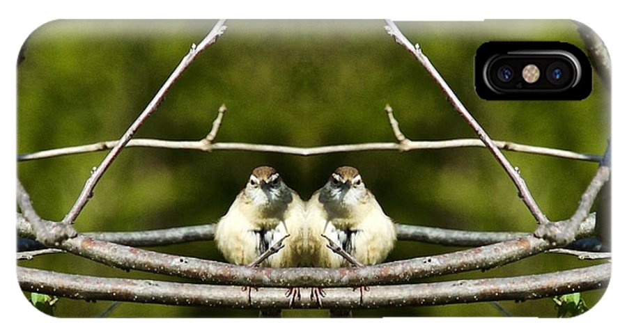Carolina Wren IPhone X / XS Case featuring the photograph Seeing Double by John Prickett