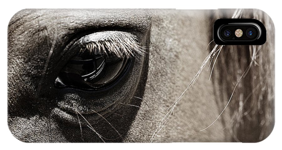 Americana IPhone X Case featuring the photograph Stillness In The Eye Of A Horse by Marilyn Hunt