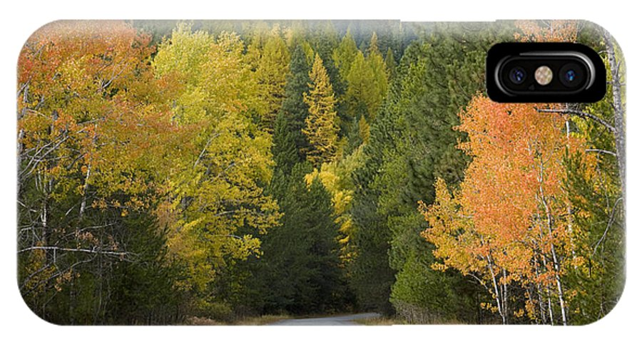 Trees IPhone X Case featuring the photograph Selkirk Color by Idaho Scenic Images Linda Lantzy