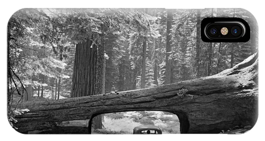 1957 IPhone X Case featuring the photograph Sequoia National Park by Granger