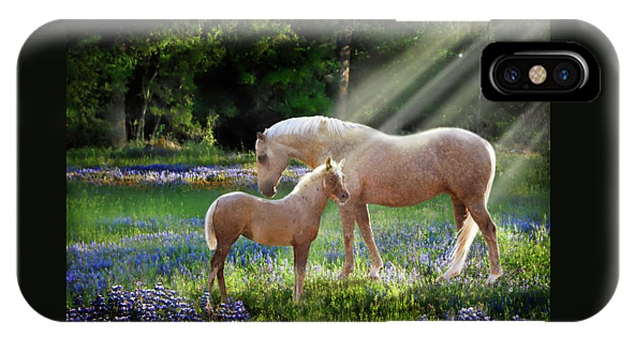 Horse Photography IPhone X Case featuring the photograph Serenity by Melinda Hughes-Berland