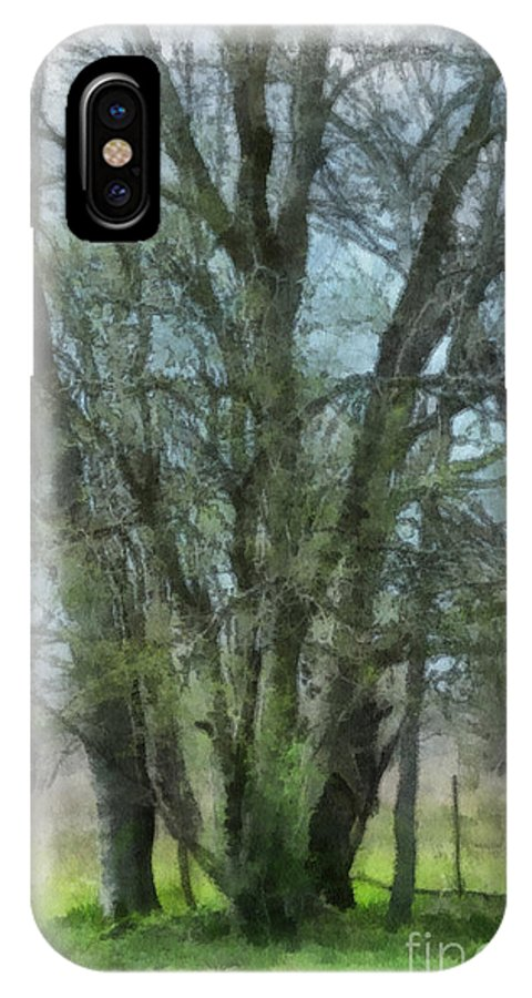 Trees IPhone X Case featuring the photograph Serenity by Paulette B Wright