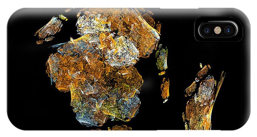 Wild IPhone X Case featuring the digital art Serious Talk by Viktor Savchenko