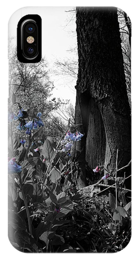 Virginia Bluebells IPhone X Case featuring the photograph Shaded Blues by Dylan Punke