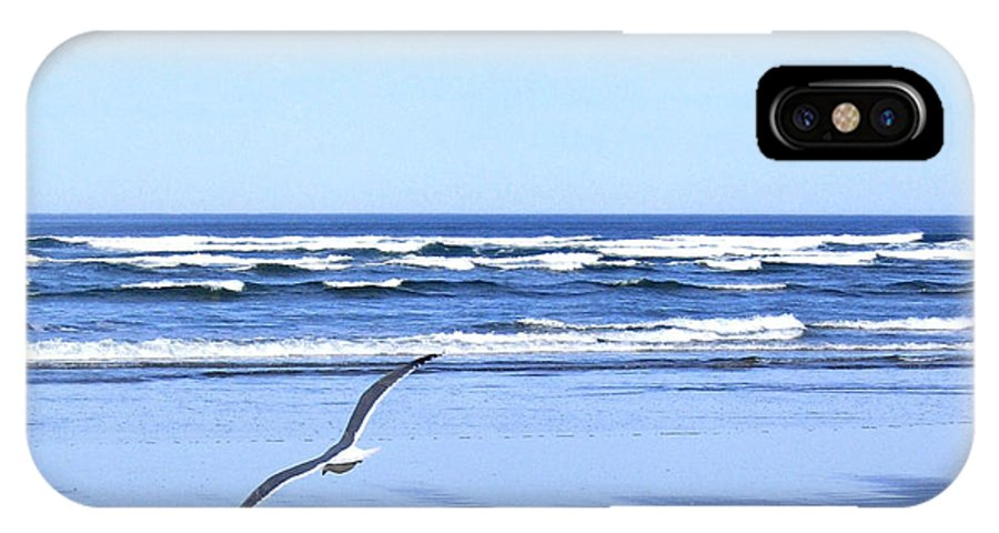Seagull IPhone X Case featuring the photograph Shadow On The Sand by Will Borden