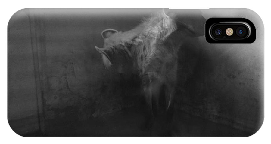 Hyena Zoo Black And White Cornered Beast Light Photo Manipulation IPhone X Case featuring the photograph Shamed Beast by Mina Milad