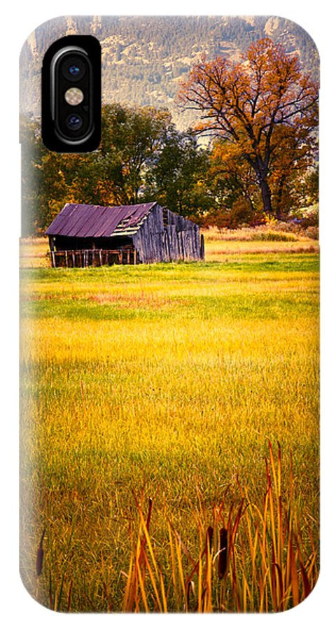 Shed IPhone X Case featuring the photograph Shed In Sunlight by Marilyn Hunt