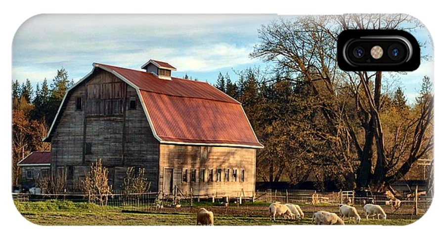 Barn IPhone X Case featuring the photograph Sheep Farm by Jim Romo