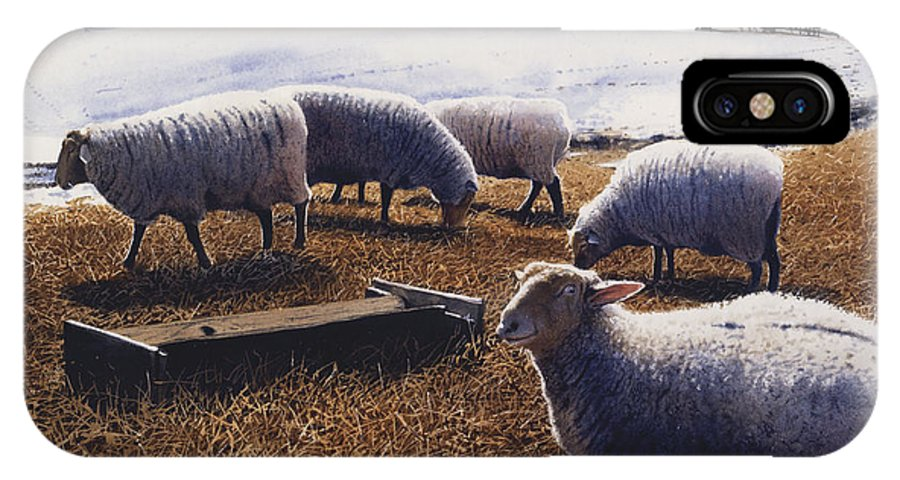 Sheep IPhone X Case featuring the painting Sheepish by Denny Bond