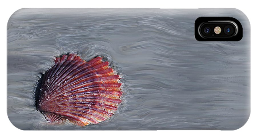 Shells IPhone X Case featuring the photograph Shell Imprint by Linda Sannuti
