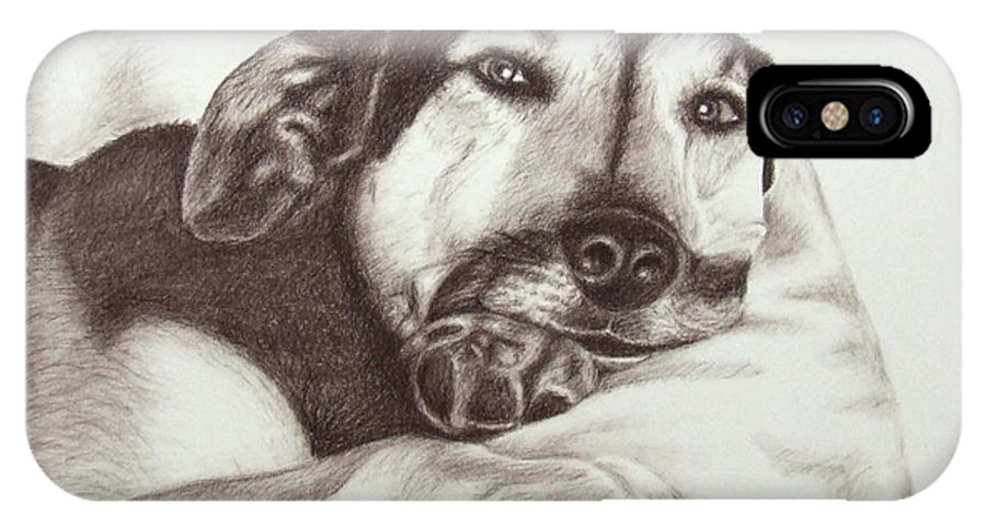 Dog IPhone Case featuring the drawing Shepherd Dog Frieda by Nicole Zeug