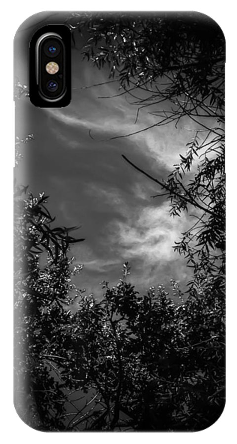 Black And White IPhone X Case featuring the photograph Shimmering Tree Branches by Heather Joyce Morrill
