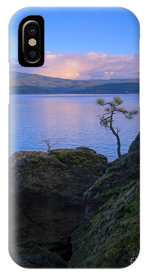 Tree IPhone X Case featuring the photograph Shore Dance by Idaho Scenic Images Linda Lantzy