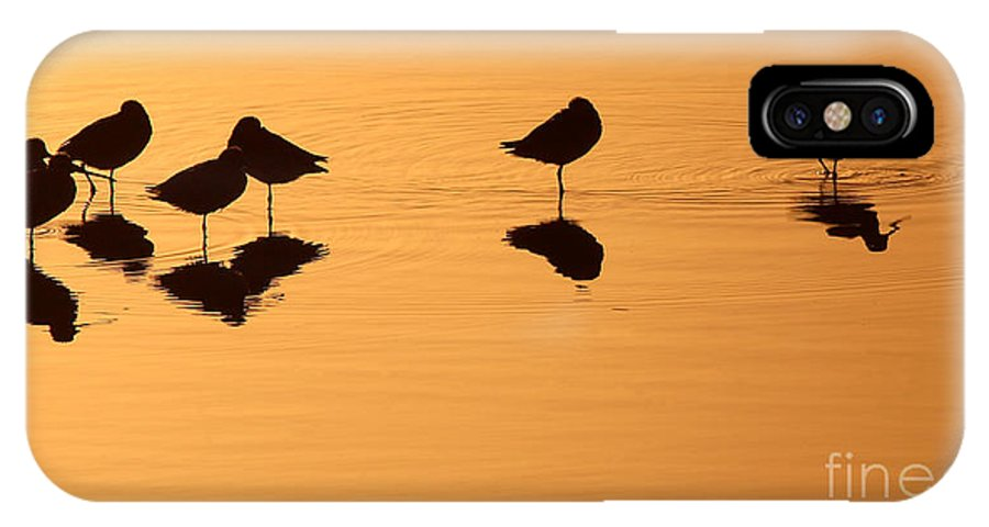 Shorebird IPhone X Case featuring the photograph Shorebirds On The Sea At Sunrise by Max Allen