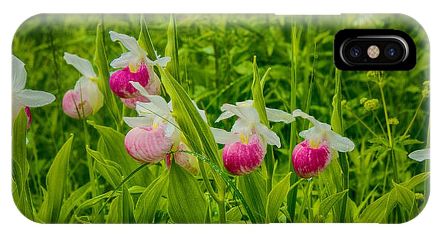 Showy Lady's Slipper IPhone X Case featuring the photograph Showy Lady's Slipper Orchids by Craig Voth