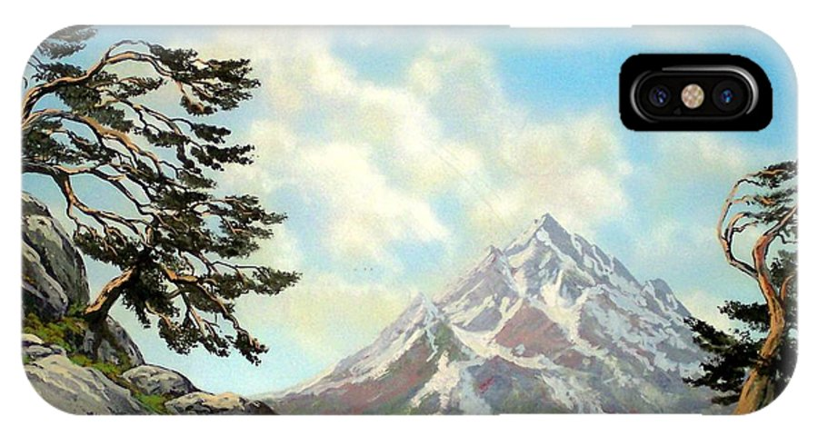 Wildflowers IPhone X / XS Case featuring the painting Sierra Warriors by Frank Wilson