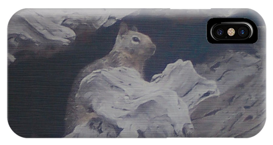 Squirrel IPhone X Case featuring the photograph Silent Observer by Pharris Art
