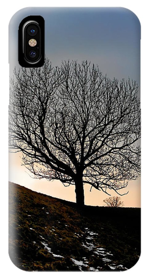 Tree IPhone X Case featuring the photograph Silhouette Of A Tree On A Winter Day by Christine Till