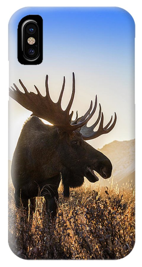 Adult IPhone X Case featuring the photograph Silhouetted By The Sunrise by Tim Grams