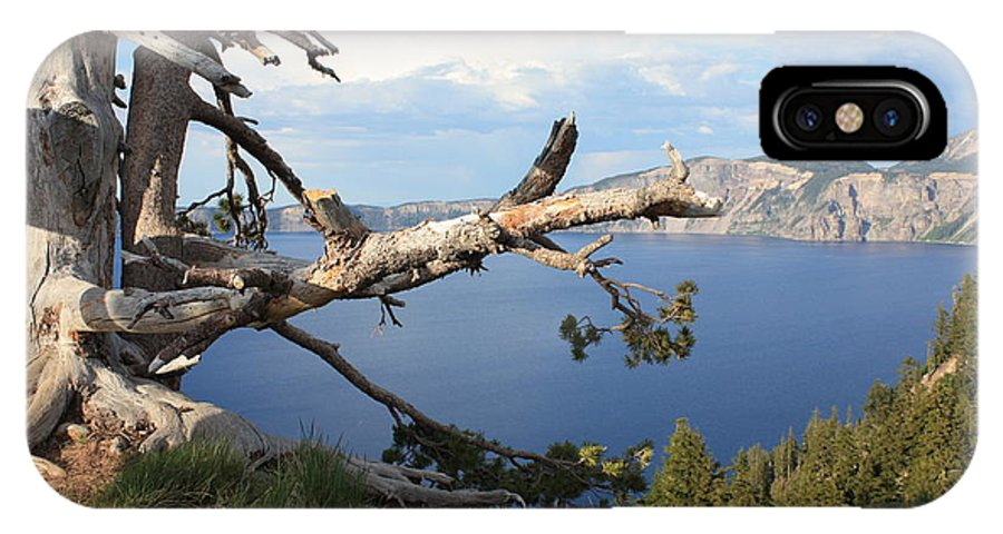 Crater Lake IPhone X Case featuring the photograph Silvery Tree Over Crater Lake by Carol Groenen