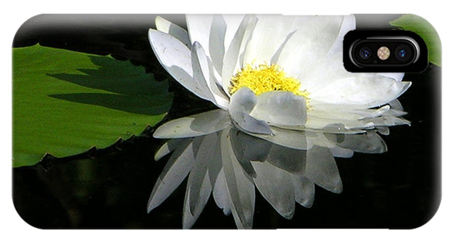 Water Lily IPhone X Case featuring the photograph Simply White on Black by John Lautermilch