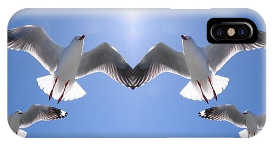 Geoff Childs IPhone X Case featuring the photograph Six Heavenly Backlit Seagulls Flying Overhead In Blue Sky. by Geoff Childs